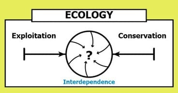 Ecology continuum converges between exploitation and conservation to become interdependence