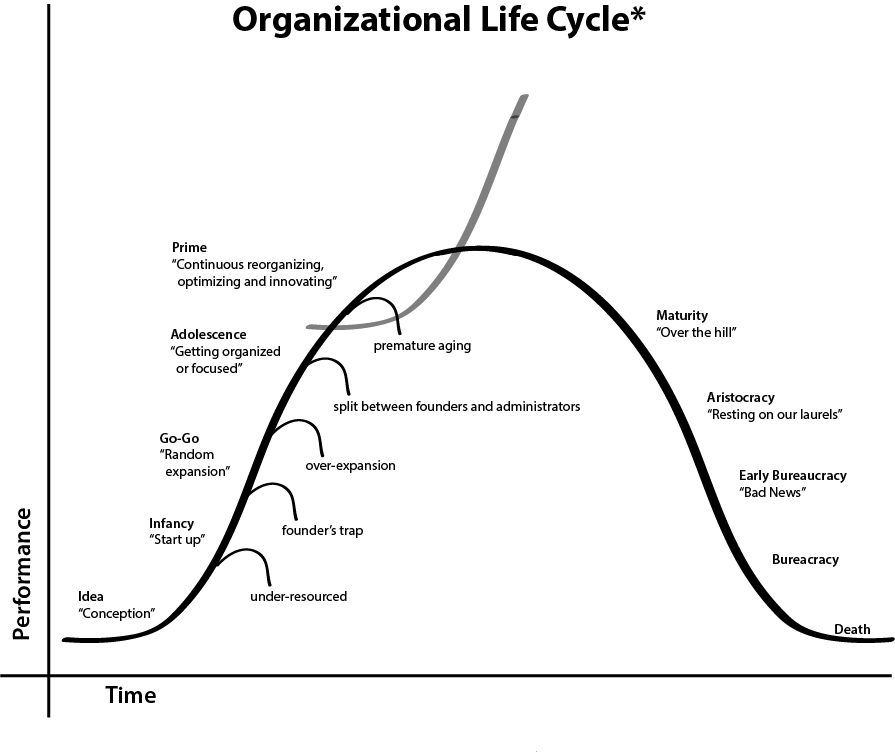Business life cycles and its influence in an organization