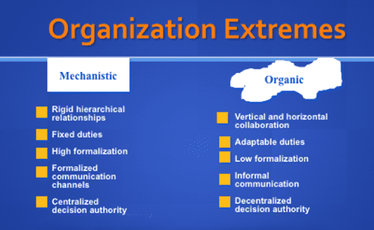 list of mechanistic organizations Who are mechanistic and organic companies burns and stalker noted that mechanistic organizations are often appropriate in.