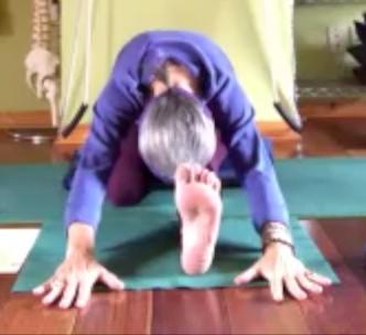 a yoga sequence for your physical body—annamaya kosha